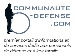 Site communautaire (défense)